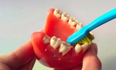 szczoteczka do mycia zębów