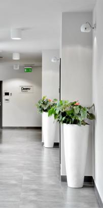 korytarz z pi eknymi kwiatami w domicach w klinice Śmigiel
